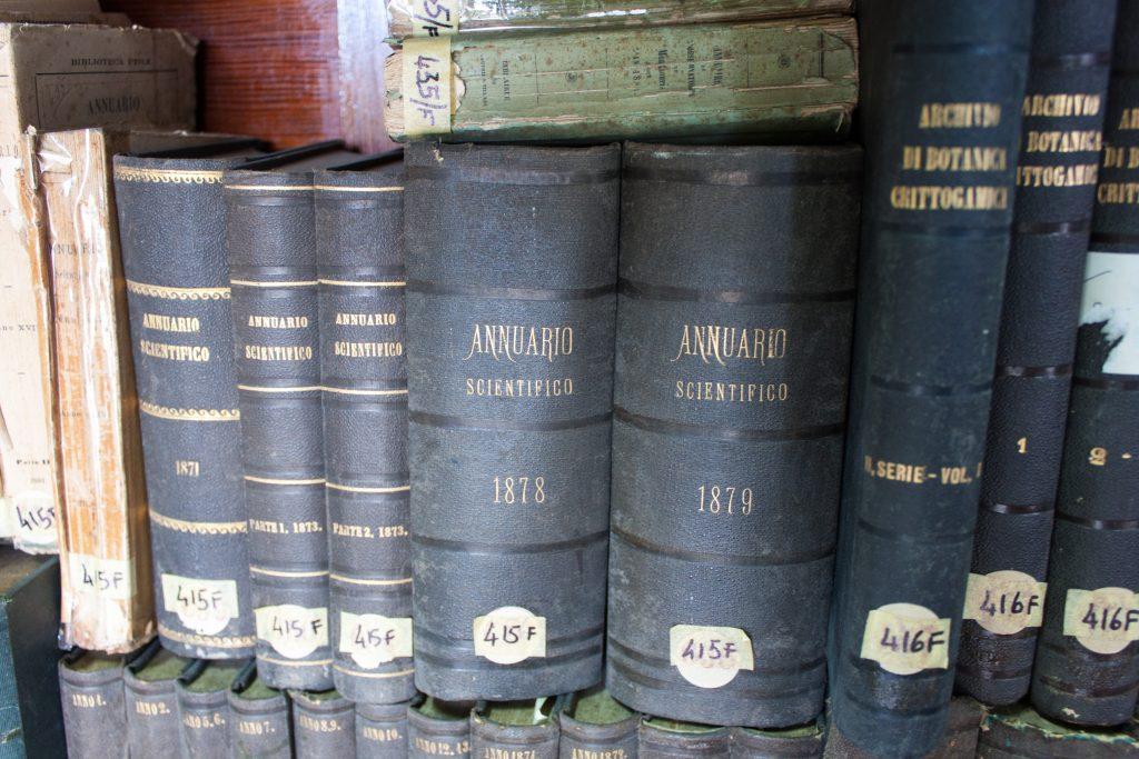 Alcuni dei libri di Paulsen